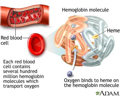 Low Hemoglobin High Iron & High Creatinine - Kidney Disease ...