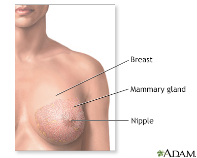 Pictures of breast buds
