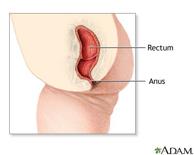 Definition of imperforated anus