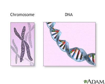 Xeroderma Pigmentosum Chromosomes Xeroderma pigmentosum